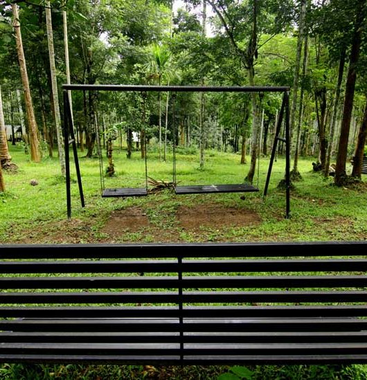 Wayanad the Lap Of Nature