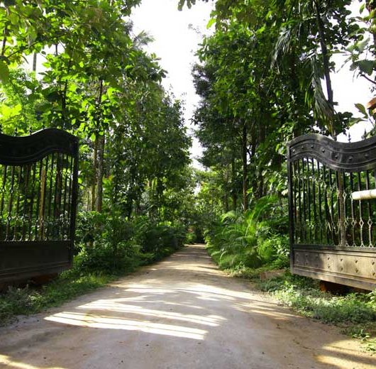 How To Reach Wayanad ?